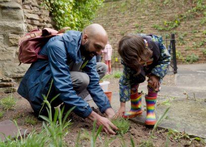 Zenn and Alma plant their Catchfly